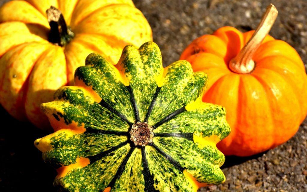 29 сентября | Районный фольклорный праздник — конкурс «Осенины»