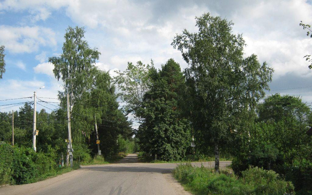 19 августа | Пешеходная экскурсия в Мартышкино